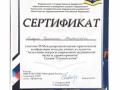 Отсканированные документы (1)-4.jpg